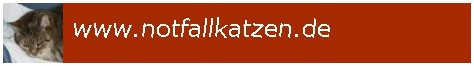 notfallkatzen-linkbanner